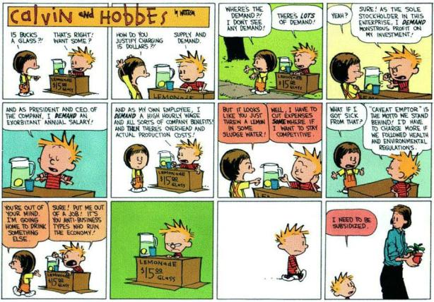 calvin and hobbes economy
